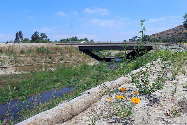 /images/migrating-safely/640px-SR-76_Undercrossing_by_Caltrans_to_facilitate_wildlife_movement_(34096675103).jpg